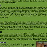 Flyer_WesternD_19_Seite_2